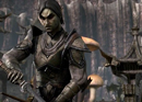 The Elder Scrolls Online - Gameplay Trailer - click to enlarge