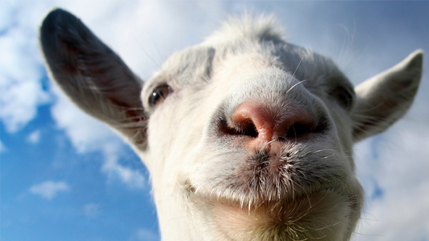 Why Aren't You Playing Goat Simulator?
